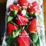佐賀産いちごの新商品【いちごさん】strawberry SAGA 【ichigosan】